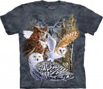 Find 11 Owls - sowy - T-shirt The Mountain