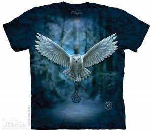 Awake Your Magic - sowa - Anne Stokes - koszulka unisex The Mountain