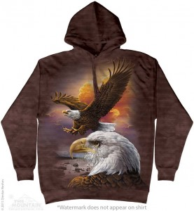 Eagle & Clouds - orzeł - bluza z kapturem The Mountain