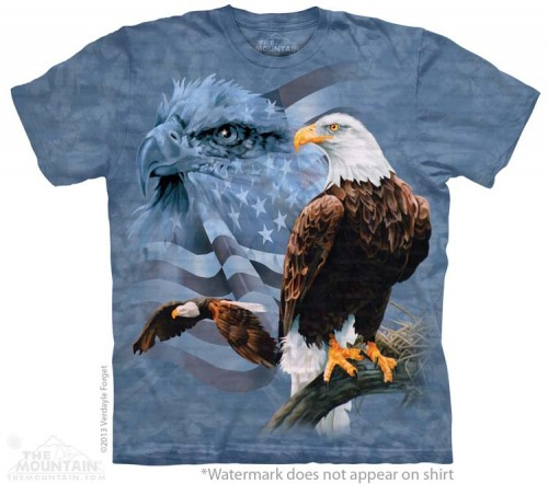Faded Flag and Eagles - T-shirt The Mountain